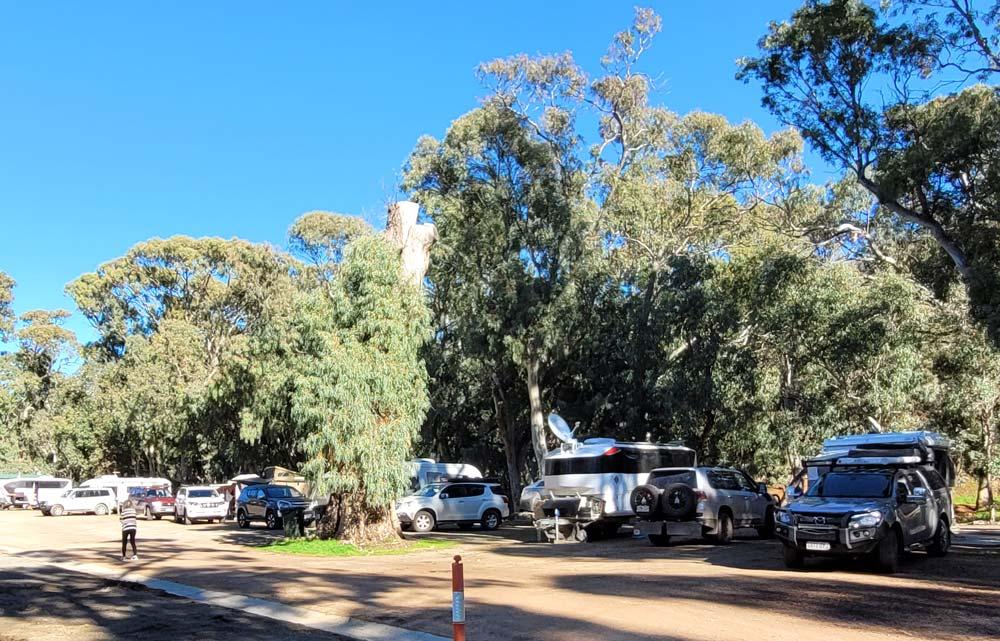 Melrose Caravan & Tourist Park